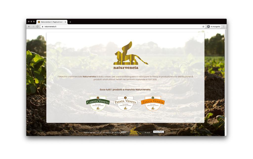 Anteprima sito desktop naturveneta