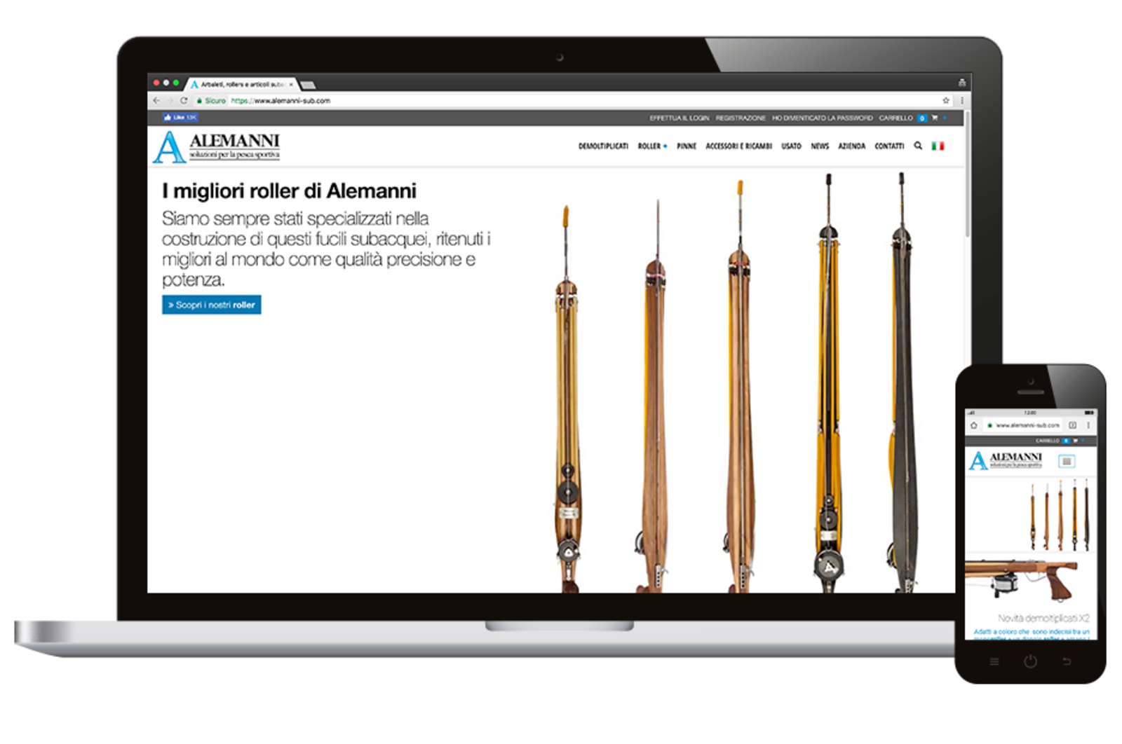 different devices showing the adaptability of the Alemanni site