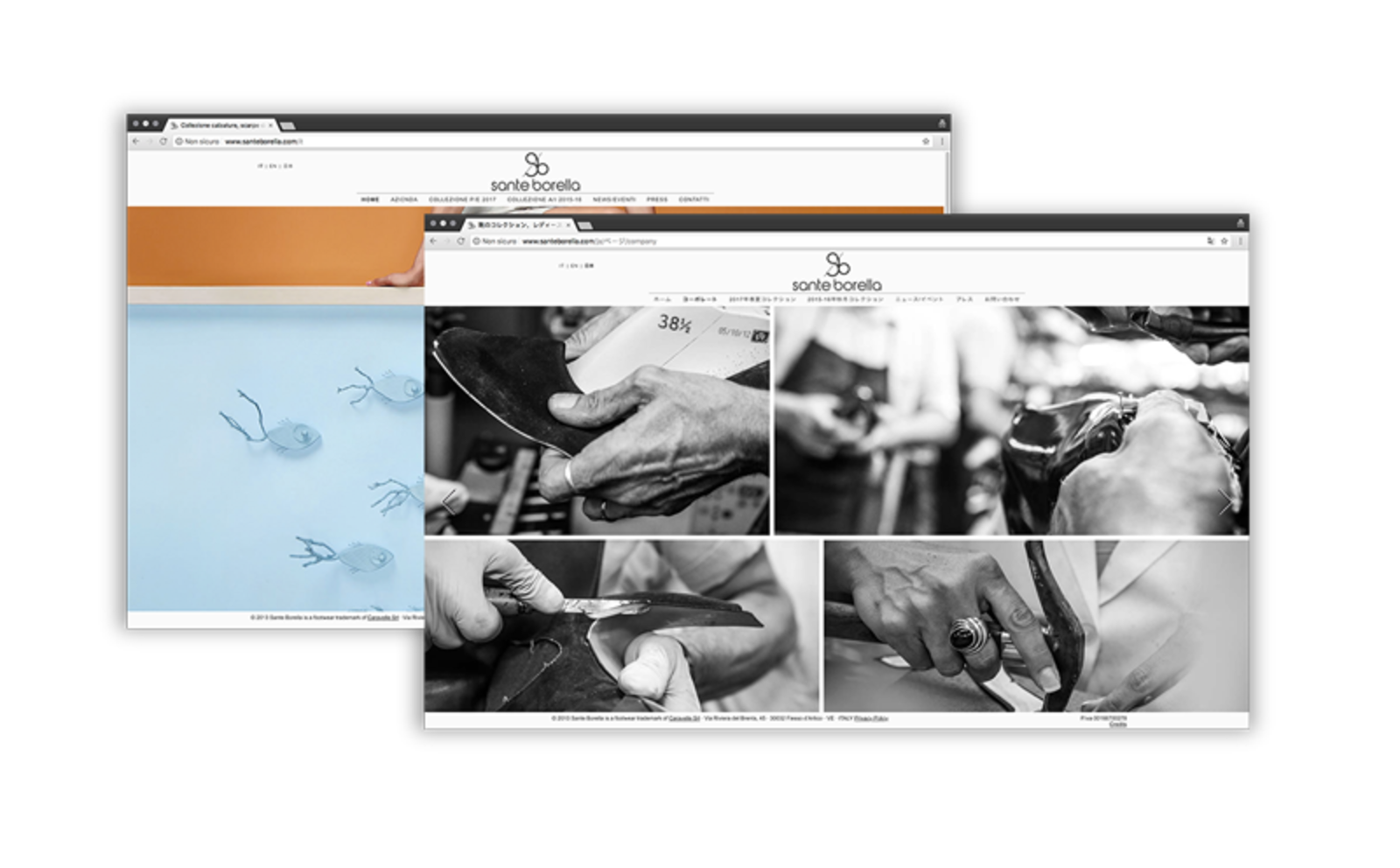"""contrasto tra lo stile fresco della homepage e quello emotivo della pagina """"azienda"""" del sito Sante Borella"""