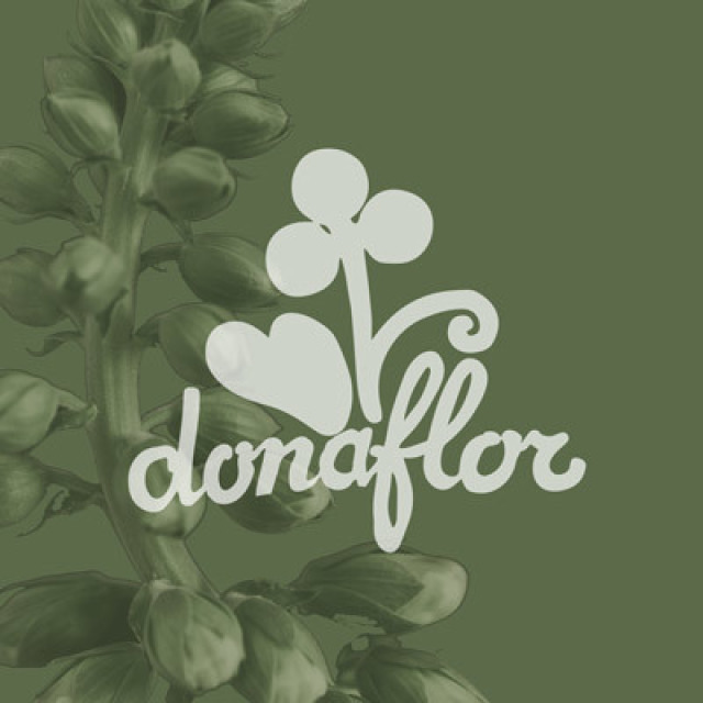Smart immagine copertina pianta verde con logo donaflor3