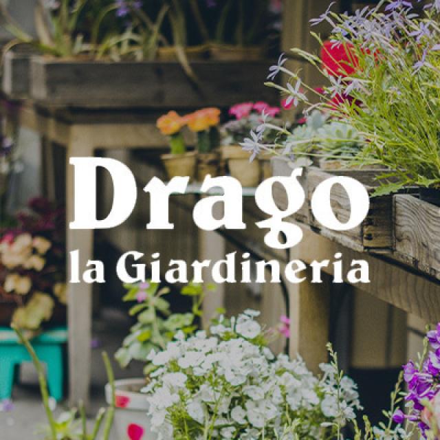 Smart giardineria drago